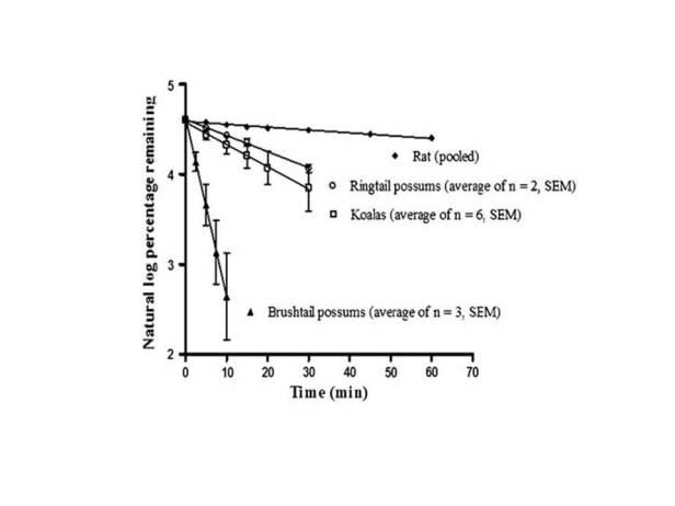 meloxicam-depletion-from-benjamins-thesis